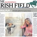 Win Irish Field subscription