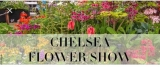 Win a VIP Day at the RHS Chelsea Flower Show