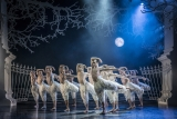 Win a VIP theatre experience to see Matthew Bourne's Swan Lake, Manchester