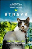 Win a copy of Strays by Britt Collins