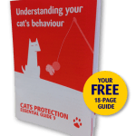 Understanding your Cats behaviour