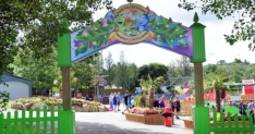 Win family day passes to Camel Creek Adventure Park, Cornwall