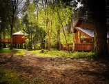Win a Forest Holidays cabin break