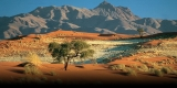 Win a Nikon D3400 and a Holiday to Namibia