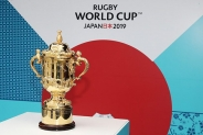 The Ultimate Rugby World Cup Competition