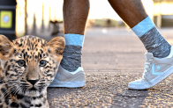 Win Bamboo Socks that help endangered animals