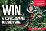 Win a Calibre Bossnut 2019