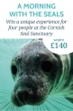 Win an experience at the Cornish Seal Sanctuary