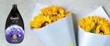 Win a monthly bouquet from waitroseflorist.com